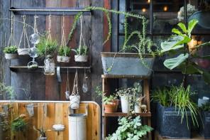 Beneficios de la jardinería que puede que no conozcas