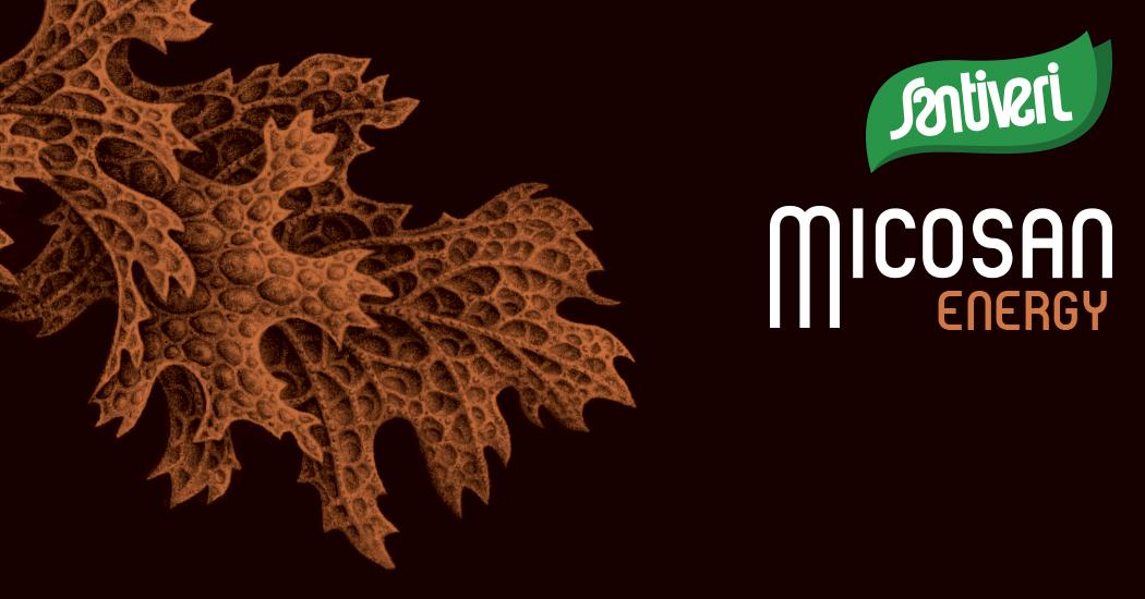 Micosan Energy Santiveri