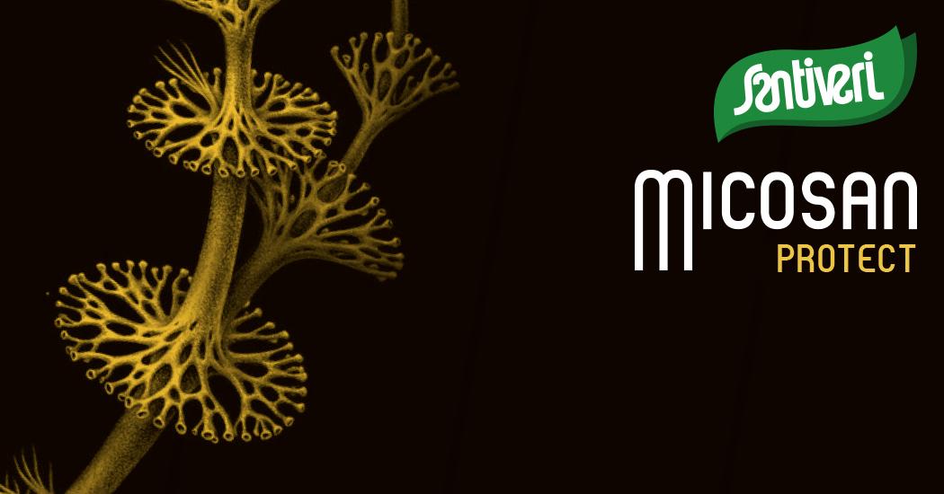 Micosan Protect Santiveri
