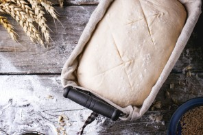 Pan Grillé Bio, el pan tostado más digestivo