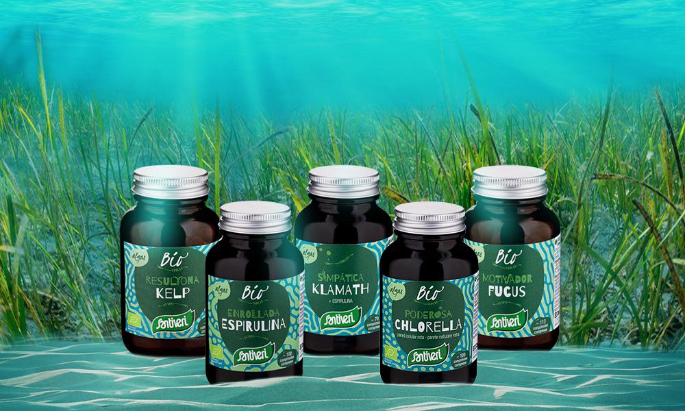 Santiveri alghe superalimenti