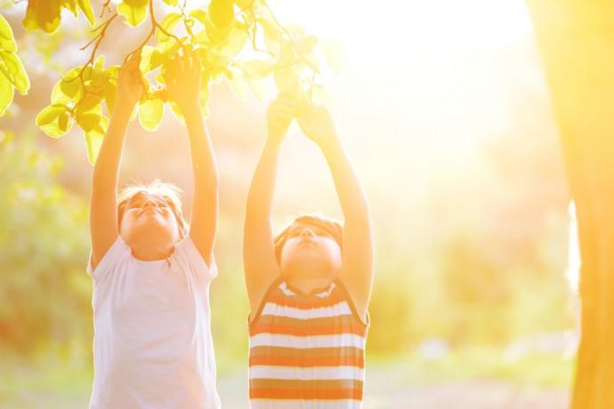 vitamina C, acido ascorbico, antiossidanti difese, sistema immunitario