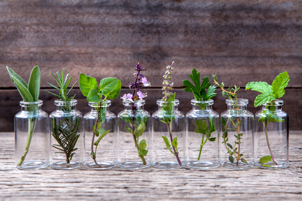 Estratti vegetali Santiveri