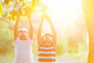 vitamina C defensas sistema inmune vitalidad