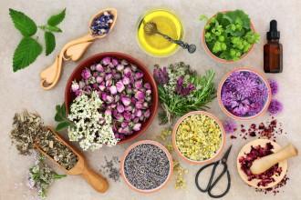 La fitoterapia a base di estratti titolati di piante