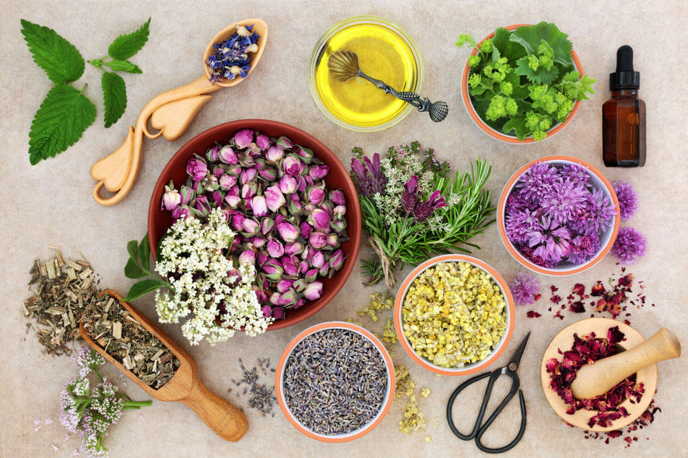 La fitoterapia basada en extractos titulados de plantas