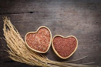 Lievito di riso rosso per il colesterolo