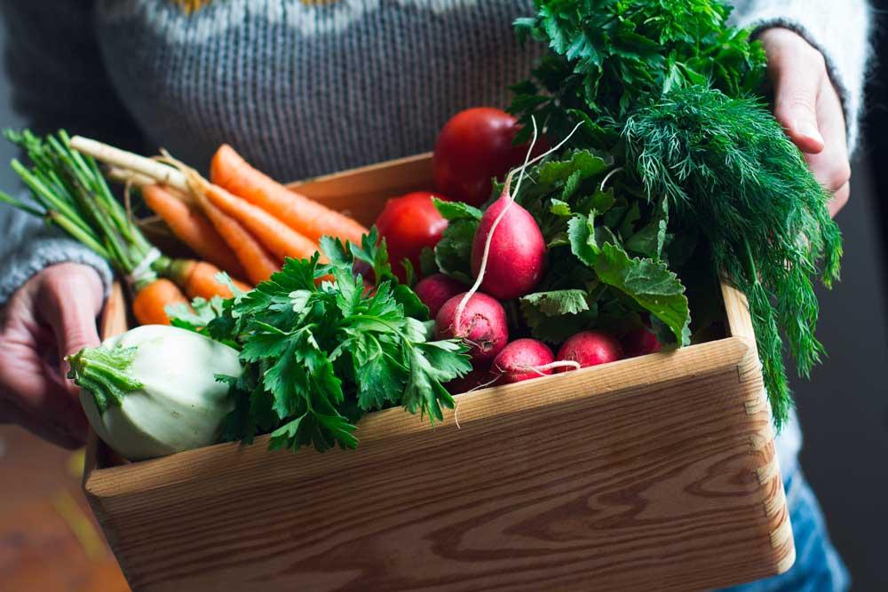 recetas para un menú vegetariano