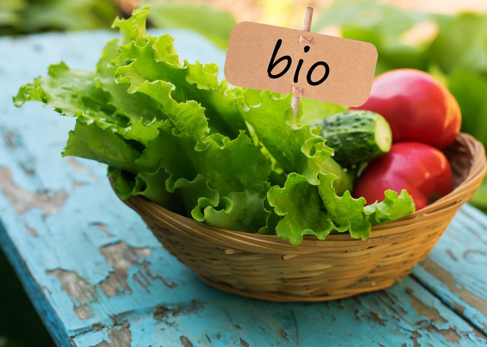 importancia alimentación bio